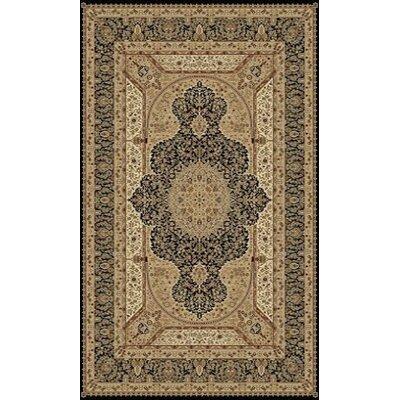 Tabriz Black Area Rug Rug Size: 5 x 8
