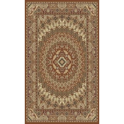Tabriz Brown Indoor/Outdoor Area Rug Rug Size: 5 x 8