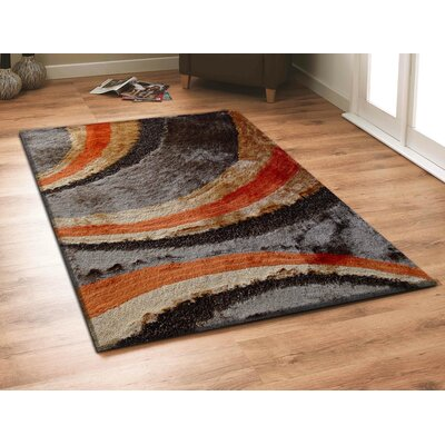 Shaggy Viscose Design Area Rug Rug Size: 5 x 7