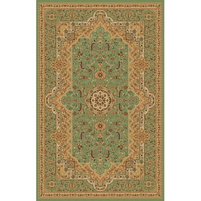 Boody Traditional Oriental Green Area Rug Rug Size: Rectangle 54 x 75