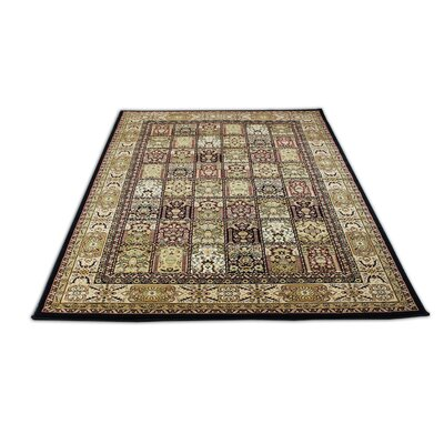 Mona Lisa Black Area Rug Rug Size: 54 x 75