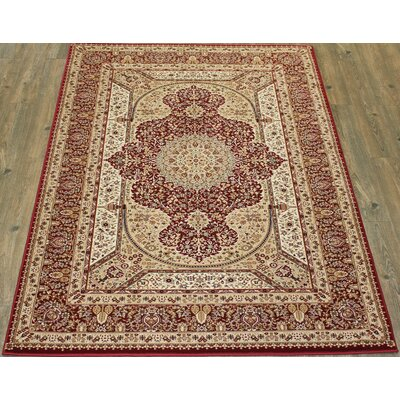 Tabriz Red Indoor/Outdoor Area Rug Rug Size: 8' x 11'