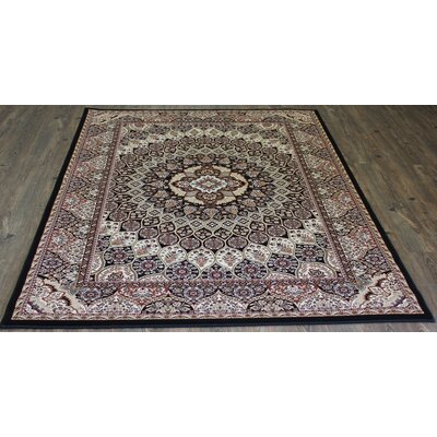 Linde Black Area Rug Rug Size: Rectangle 54 x 75