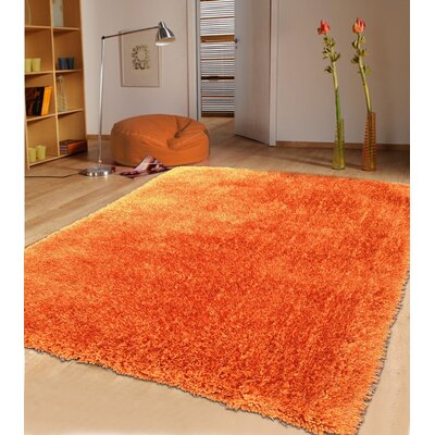 Shaggy Hand Tufted Rust Area Rug
