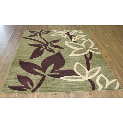 Temaraia Green Area Rug Rug Size: Rectangle 8 x 11