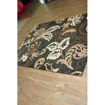 Ganey Black/Brown Indoor Area Rug Rug Size: Rectangle 5 x 8