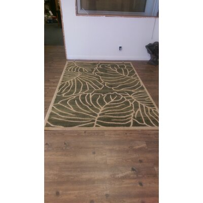 Sharpley Green Area Rug Rug Size: Rectangle 5 x 8