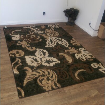 Lifestyle Black Indoor/Outdoor Area Rug Rug Size: 8 x 11