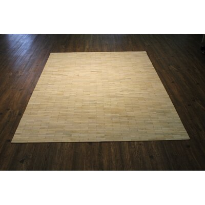Petrick Handwoven Beige Area Rug Rug Size: Rectangle 5 x 7