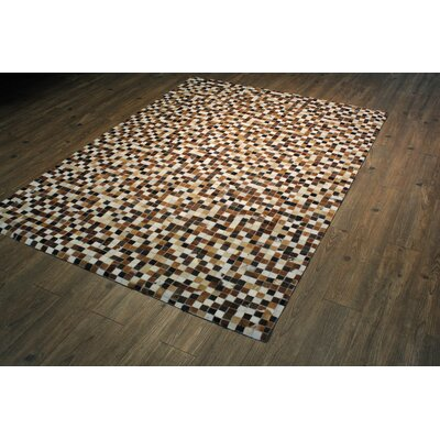 Petrella Handmade Dark Brown/White Area Rug