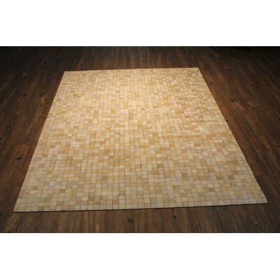 Peterman Hand-Woven Beige Area Rug Rug Size: Rectangle 76 x 96