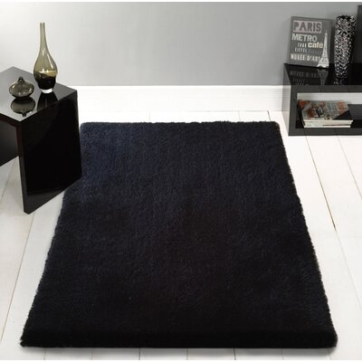 Stenger Hand Tufted Black Area Rug