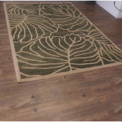 Shellcove Green Area Rug