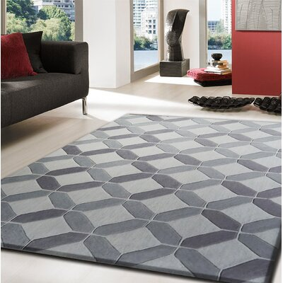Heaney Transitional Hand-Tufted Gray Area Rug