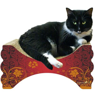 Scratch n Shapes Rub n Lounge Recycled Paper Scratching Board