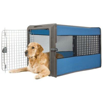 Large Pop Open Pet Crate Color: Blue