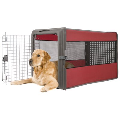 Large Pop Open Pet Crate Color: Red