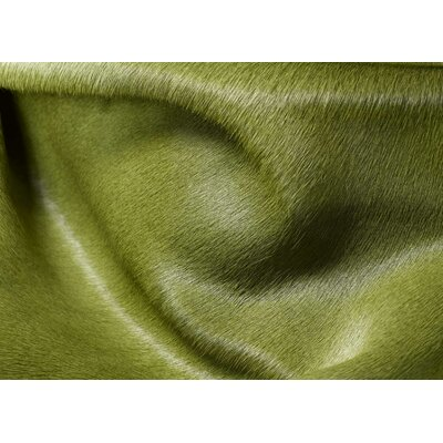 Plainsboro Hand-Woven Leather Lime Cowhide Area Rug