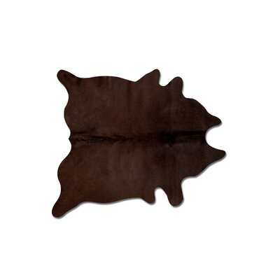 Plainsboro Handmade Chocolate Area Rug
