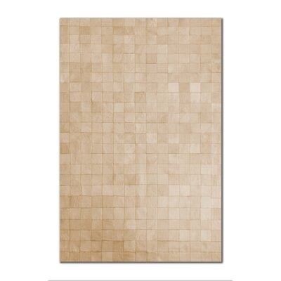 Aayush Cowhide Natural Area Rug