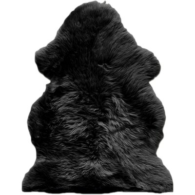 Handmade Black Area Rug Rug Size: 2 x 3