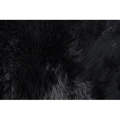 Handmade Black Sheepskin Area Rug Rug Size: Rectangle 2 x 3