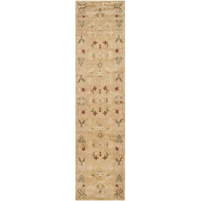Tan Area Rug Rug Size: Runner 26 x 10