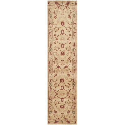 Tan Area Rug Rug Size: Runner 26 x 12