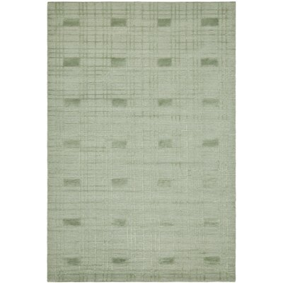 Celadon Rug Rug Size: Rectangle 6 x 9