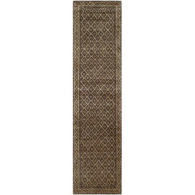 Lavander Rug Rug Size: Runner 26 x 10