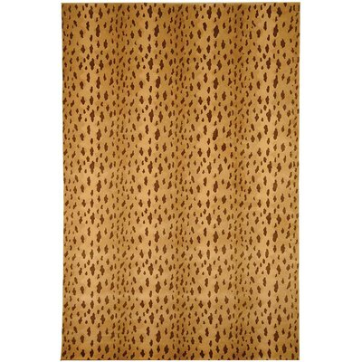 Beige Rug Rug Size: Rectangle 5' x 7'6
