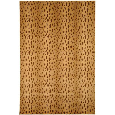 Beige Rug Rug Size: Rectangle 6' x 9'