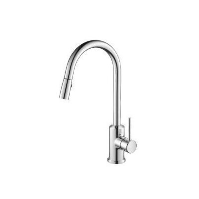 Single Handle Single Hole Kitchen Faucet with Pull Out/Pull Down Spray