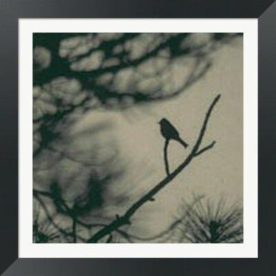 Caligraphy Bird I by Elena Ray Framed Photographic Print 10142