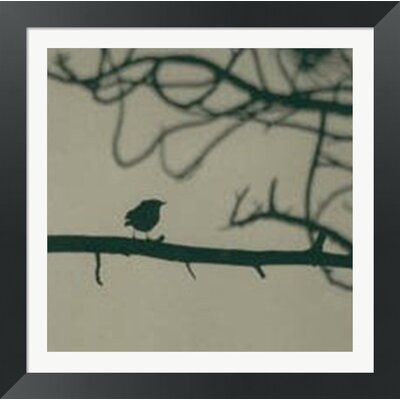 Caligraphy Bird II by Elena Ray Framed Photographic Print 10141