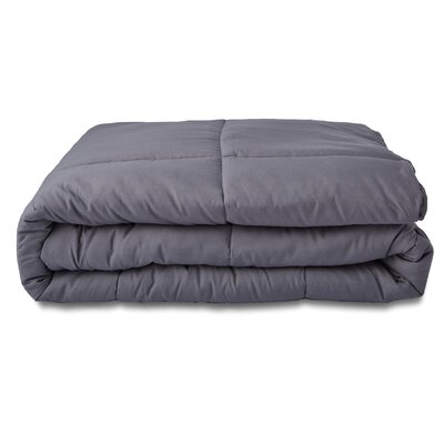 All Season Down Alternative Comforter Size: Queen