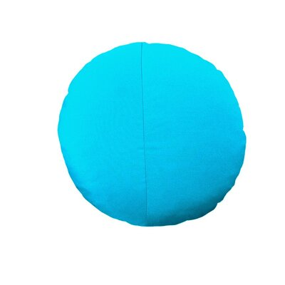 Round Outdoor Throw Pillow Color: Aruba