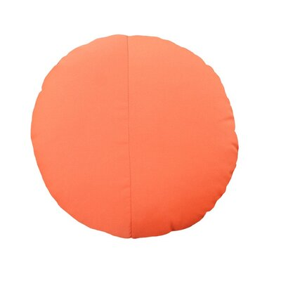 Round Outdoor Throw Pillow Color: Melon