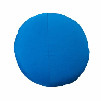 Round Outdoor Throw Pillow Color: Pacific Blue