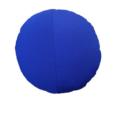 Round Outdoor Throw Pillow Color: True Blue