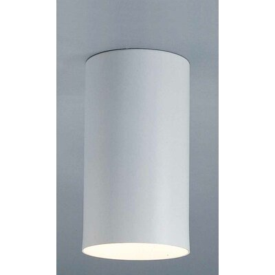 Cammi 1-Light Ceiling Fixture Flush Mount Finish: White