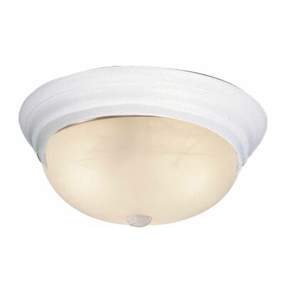 2-Light Ceiling Fixture Flush Mount Finish: White