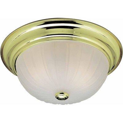2-Light Ceiling Fixture Flush Mount V7822-2
