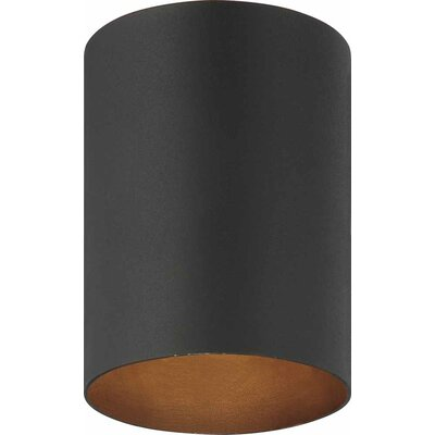 Rangeworthy 1-Light Flush Mount Finish: Black