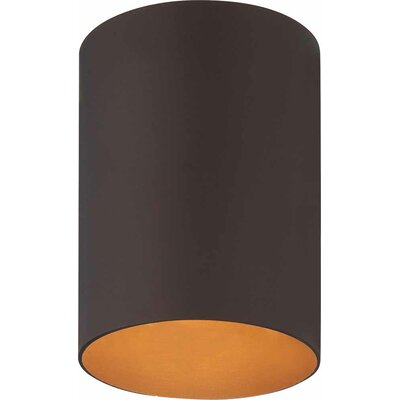 1-Light Ceiling Fixture Flush Mount