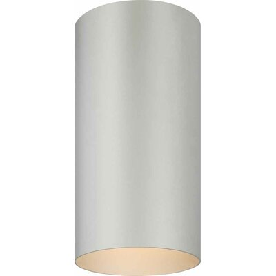 1-Light Ceiling Fixture Flush Mount Finish: Silver Gray