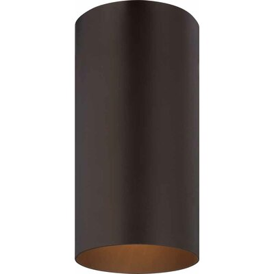1-Light Ceiling Fixture Flush Mount Finish: Antique Bronze