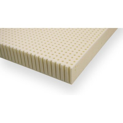 3 Plush Talalay Latex Mattress Topper Size: Twin XL