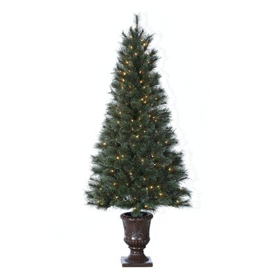6' Green Hard Needle Western Cashmere Christmas Tree with 200 Clear Lights with Pot and Stand