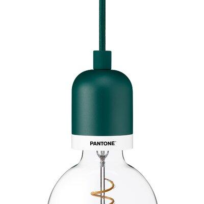 Deneb 1-Light Mini Pendant Finish: Forest Biome